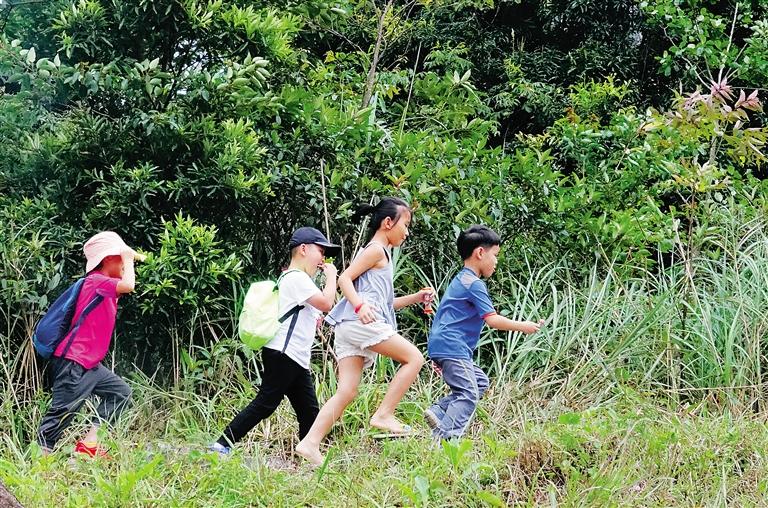 10月3日,游客们在尖峰岭国家森林公园,呼吸新鲜的空气,感受大自然的