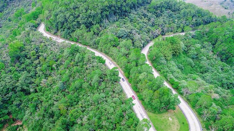 近日,俯瞰位于白沙黎族自治县的鹦哥岭保护区,丝带一样的盘山公路蜿蜒