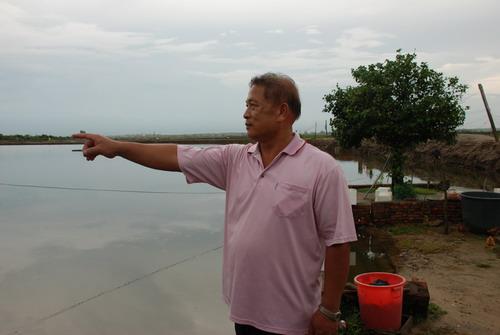 台商引进黑珍珠石斑鱼 拓展海南淡水养殖业 --